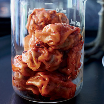 Pork Wonton Mini-brains