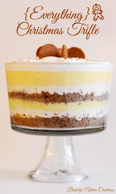 30 Christmas Trifle Recipes: Everything Christmas Trifle